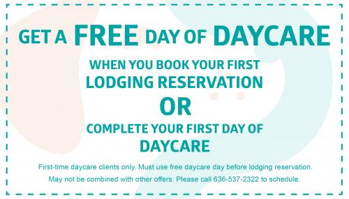 daycare offer website